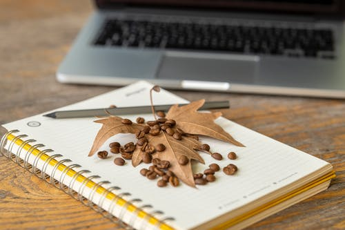 Brown Leaf and Coffee Beans On A Notebook