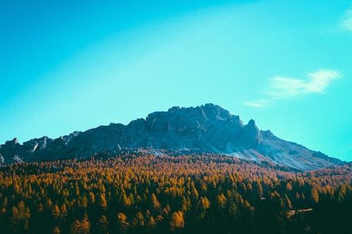 Gratis stockfoto met bergketen, bergtop, blauwe lucht, bomen