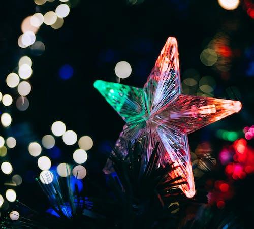 Free stock photo of christmas, holidays, lights, star