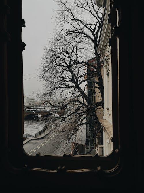 Darmowe zdjęcie z galerii z architektura, ciemny, kolor jesieni, okna