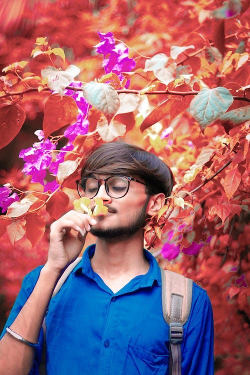 4k 바탕화면, 노란색 꽃, 소년의 무료 스톡 사진