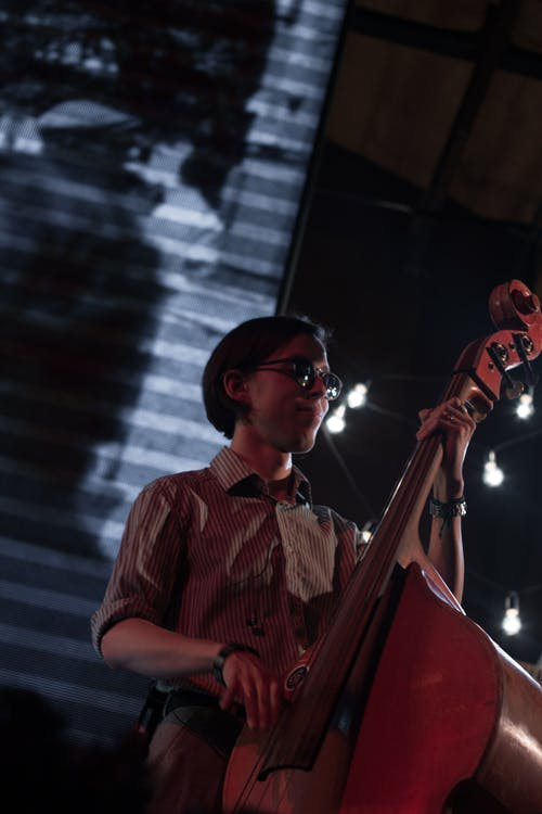 Free stock photo of concert, contrabass, musician