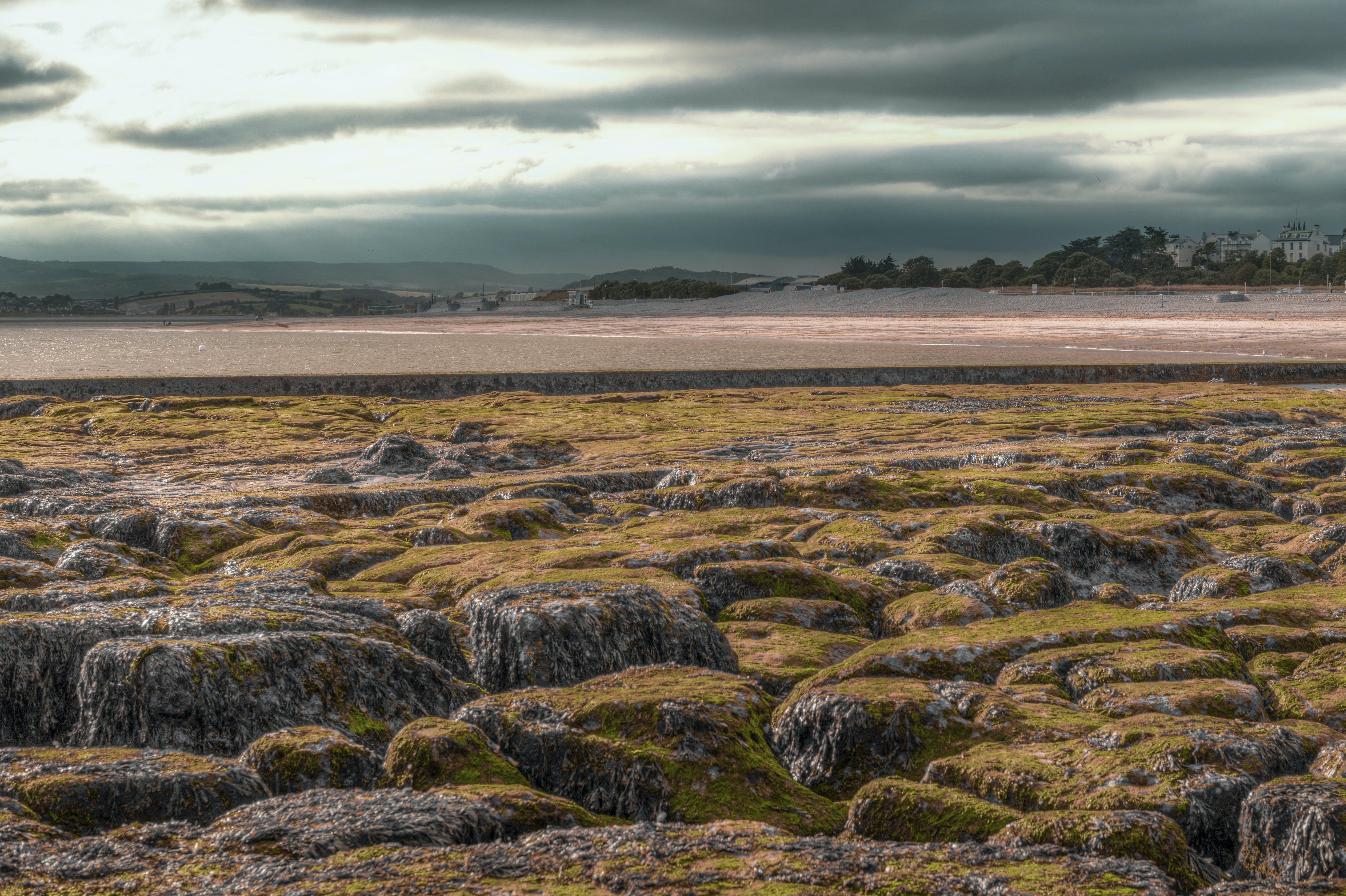 Free stock photo of sea, sky, beach, stones