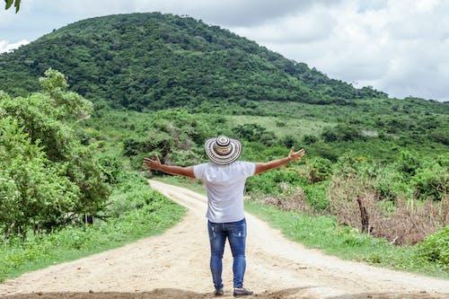 Photos gratuites de arbres, bras levés, campagne, chapeau