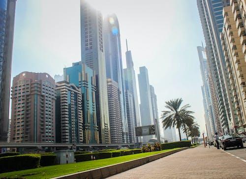 Základová fotografie zdarma na téma budova, Dubaj, modrá, mrakodrapy