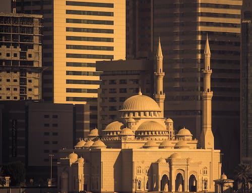 Základová fotografie zdarma na téma architektura, budova, duba, mešita
