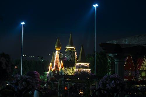 Základová fotografie zdarma na téma Dubaj, květinová zahrada, noc, umělé květiny