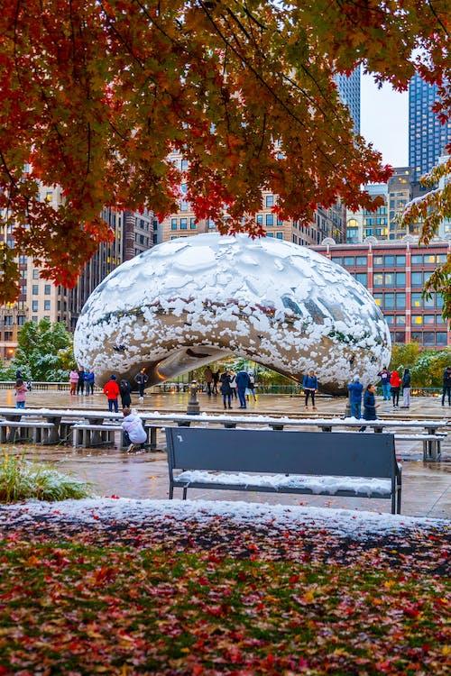 Foto d'estoc gratuïta de arquitectura, caure, chicago, colors de tardor