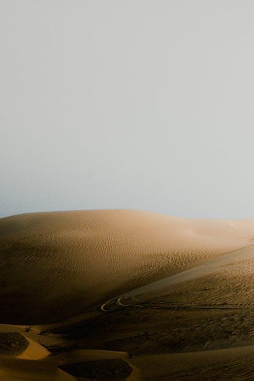 Sandy dunes in desert terrain in sunny day