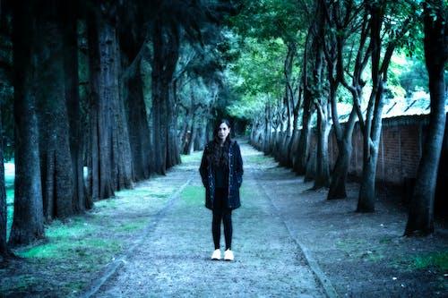 감기, 검은색, 검정, 겨울의 무료 스톡 사진