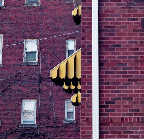 Ingyenes stockfotó borostyán, sárga, tégla témában
