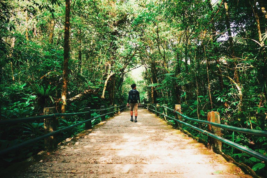 Indonézia, les, magický
