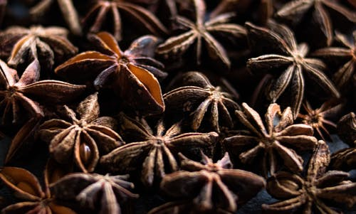 Free stock photo of anise, cooking, food, food art