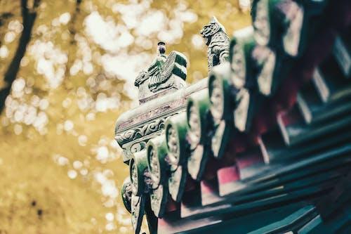 Základová fotografie zdarma na téma 公园, 北京, 季节, 建筑