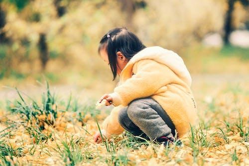 Základová fotografie zdarma na téma 公园, 北京, 季节, 小孩