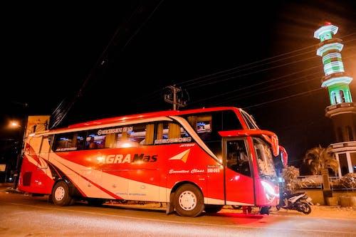 バス, 夜, 街の夜の無料の写真素材