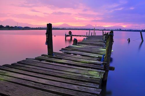 Darmowe zdjęcie z galerii z dok, drewno, fioletowy, kolorowy