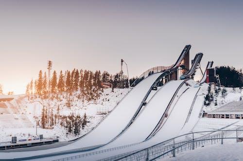 下坡, 下雪的天氣, 冬季, 冬季景觀 的 免費圖庫相片