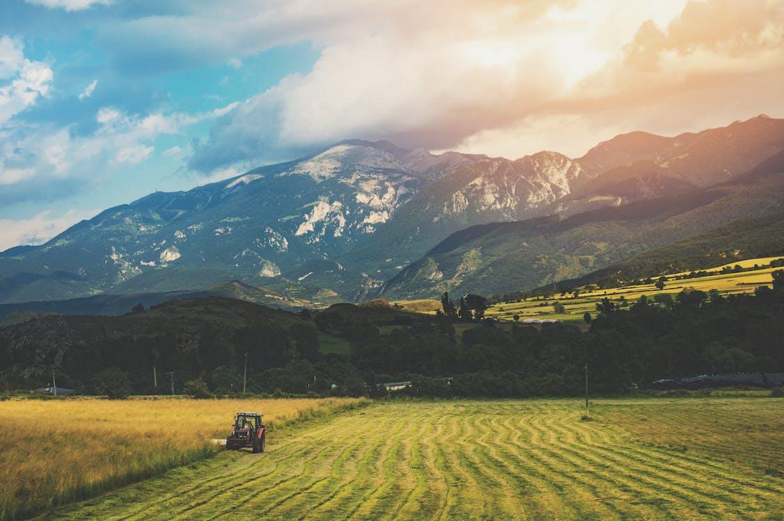 agricultura, área, barcelona