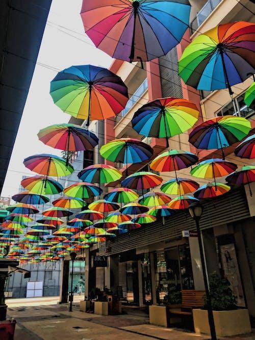 同性戀的驕傲, 彩虹, 晴天, 雨傘 的 免费素材照片