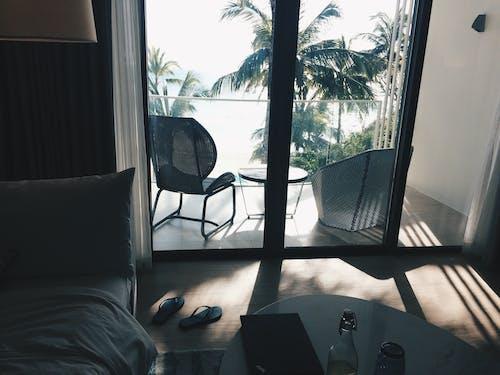 下午, 光, 太陽, 室內 的 免费素材照片