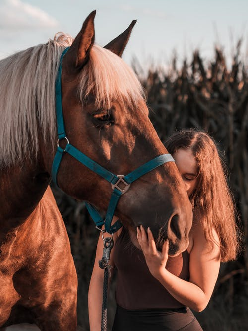 Photo Of Woman Beside Horse