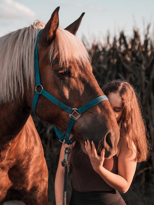 Foto De Mulher Ao Lado Do Cavalo