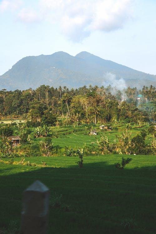 mount, mountain, tropics