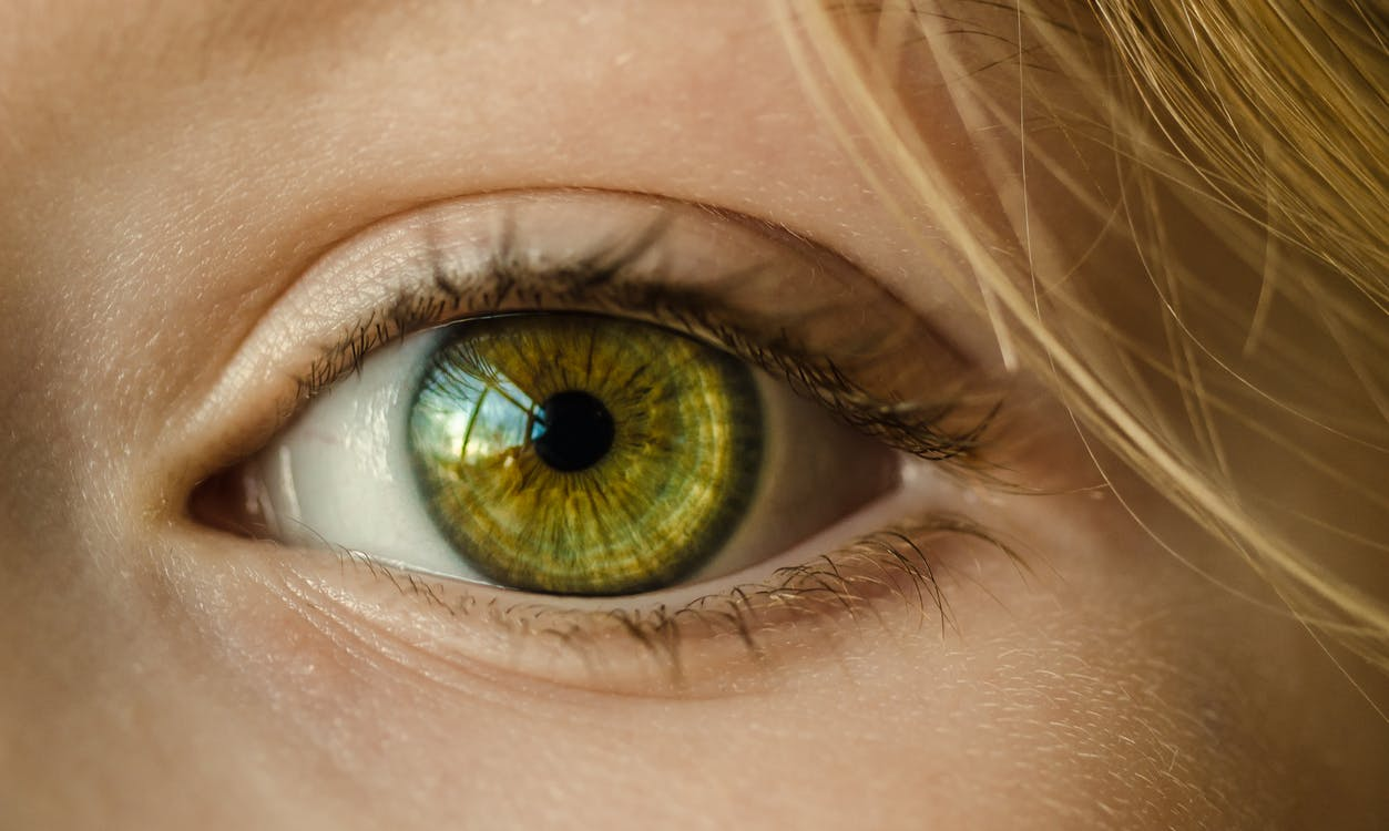 Person's Eye