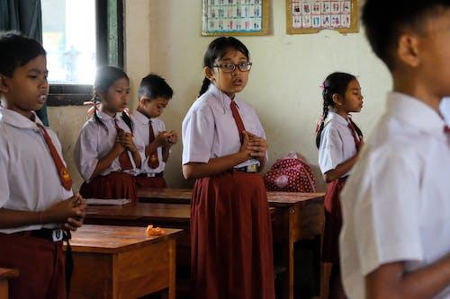 Foto d'estoc gratuïta de escola primària, estudiant, estudiants, estudiants universitaris