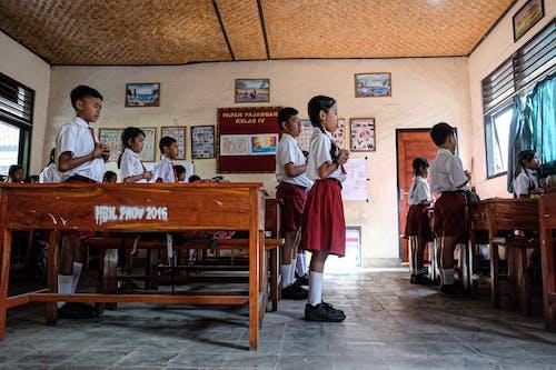 Foto d'estoc gratuïta de estudiant, nen asiàtic, nens, oració