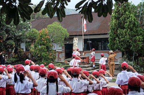 Foto d'estoc gratuïta de cerimònia, escola primària, estudiant, nen asiàtic