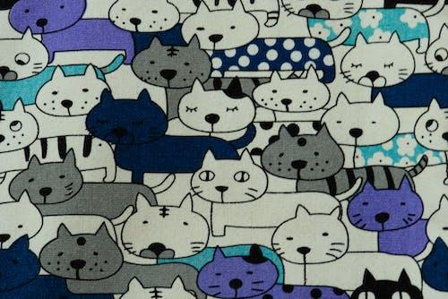 Бесплатное стоковое фото с кошки.