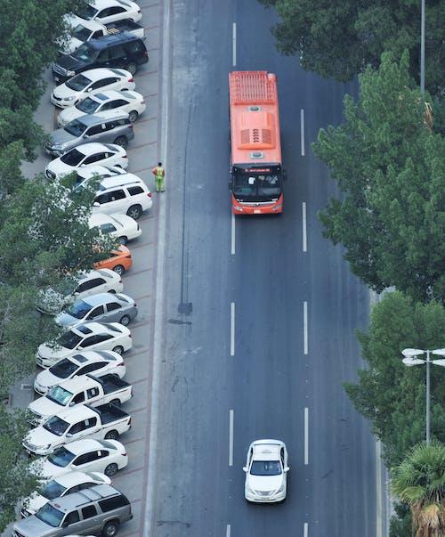 Gratis lagerfoto af bil, biler, bus, busway