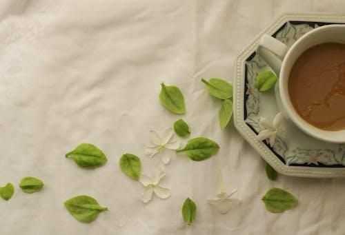 Imagine de stoc gratuită din alb, atrăgător, băutură, cafea