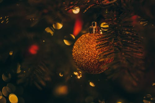 Selective Focus Photo of Gold Bauble on Christmas Tree