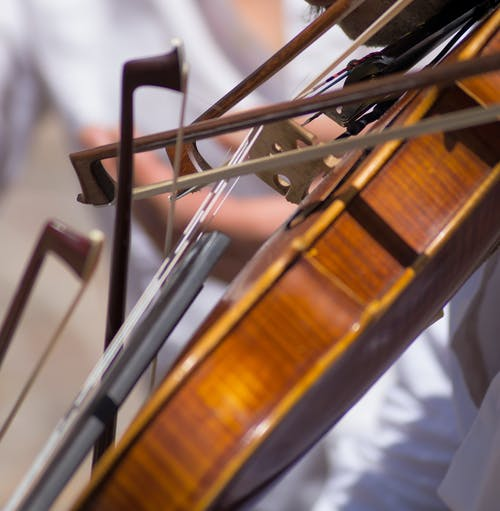 Free stock photo of bows, entertainment, having fun, musician