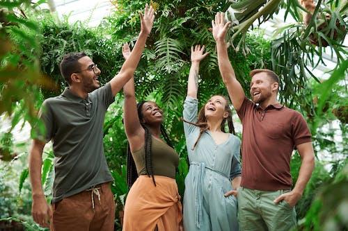 가장 친한 친구, 그룹, 나뭇잎, 단란함의 무료 스톡 사진