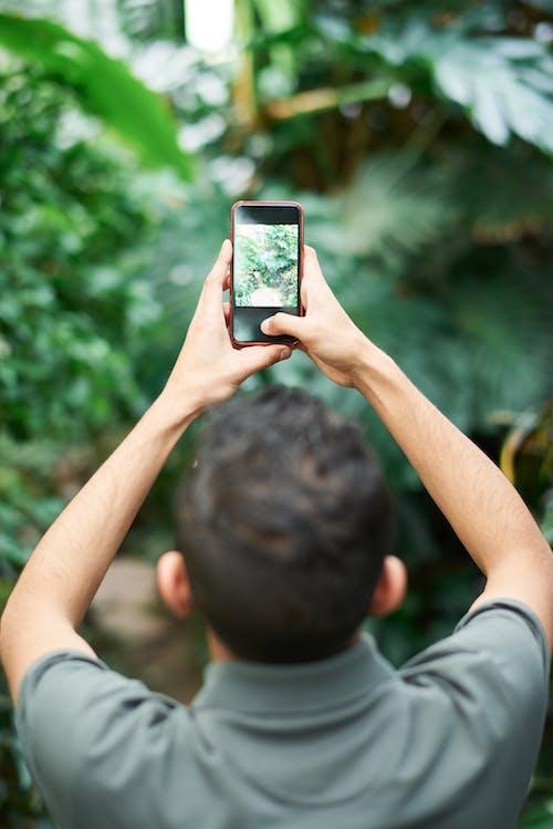 Man Taking Photo Of Plants