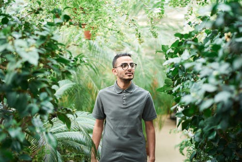 Man Wearing Polo Shirt Standing Near Green Leafed Plants
