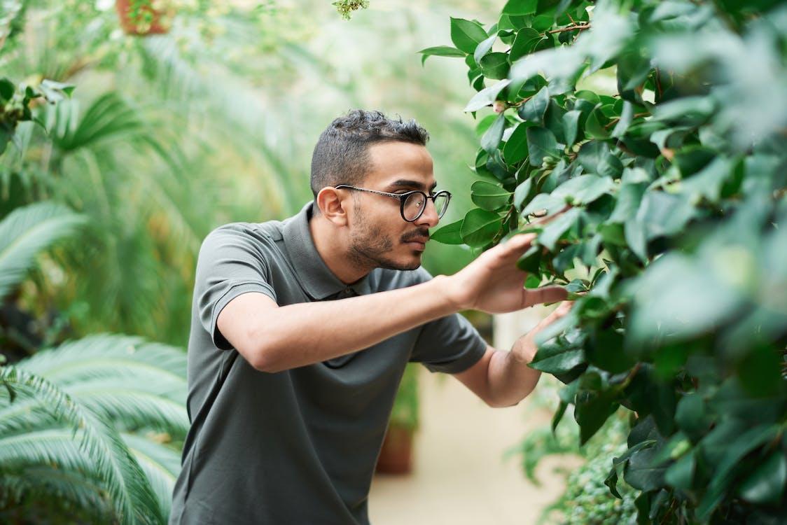 Man Wearing Polo Shirt Standing Near Green Plants