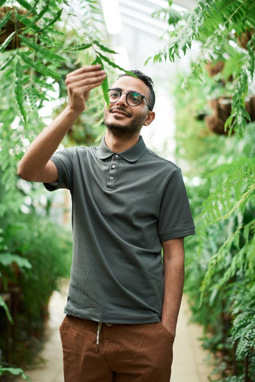 Man Wearing Polo Shirt While Touching a Plant
