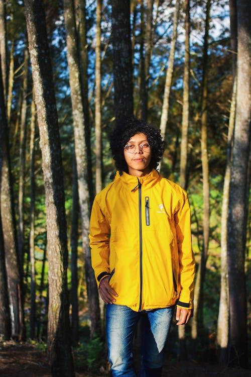 Foto d'estoc gratuïta de a l'aire lliure, adult jove, arbres, asiàtics