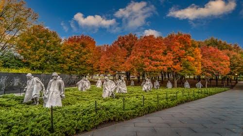 Ilmainen kuvapankkikuva tunnisteilla ei ihmisiä, historia, korealainen, kuuluisa paikka
