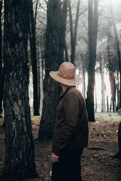 คลังภาพถ่ายฟรี ของ กลางวัน, กลางแจ้ง, คน, ต้นไม้