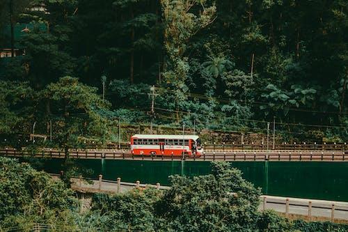 Gratis lagerfoto af bro, bus, dagslys, flod