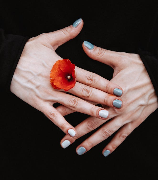 Person Holding Red-petaled Flower Between His Finger
