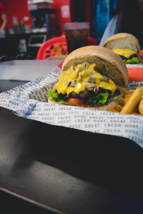 三明治, 乳酪, 乳酪漢堡, 午餐 的 免費圖庫相片