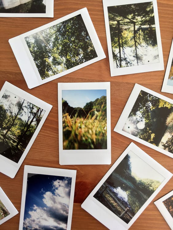 Photos on Brown Wooden Table