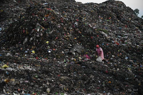 Photo of Person Collecting Trash on Landfill